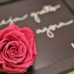 Rosa eterna do Mundo de Anna!
