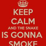 Verão 2014: estampa de cobra.
