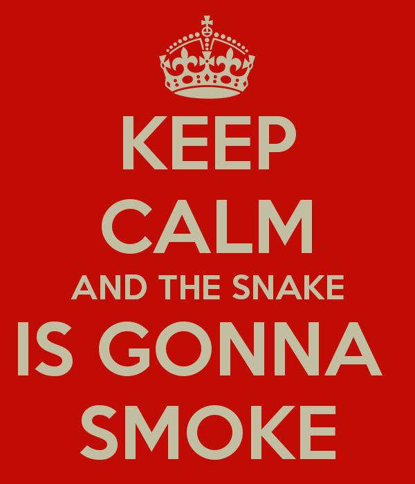 animal print cobra pyton verão 2014