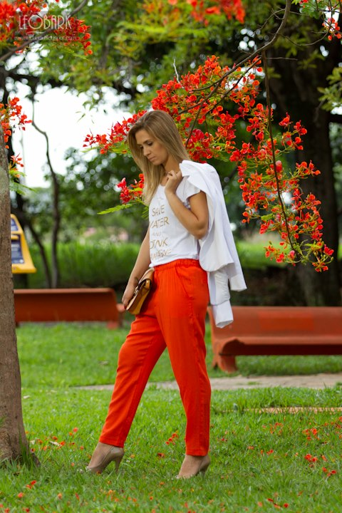 as cores coral 2