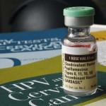 Para se inspirar: campanha de vacinação contra HPV.