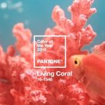 Living coral Pantone color 2019!