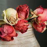 Flores secas na decoração para se inspirar!