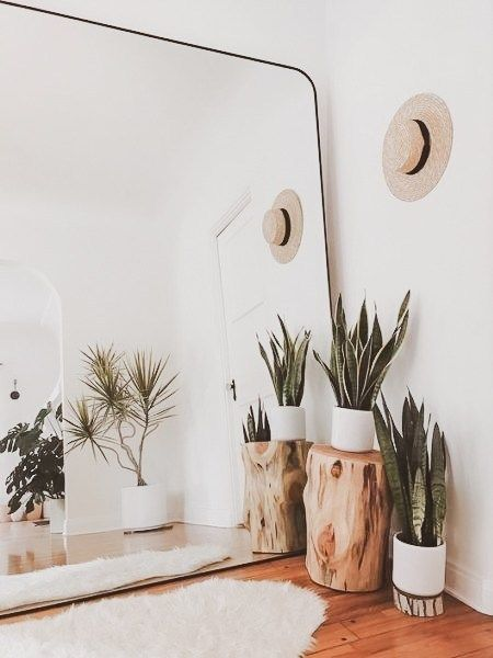 Urban jungle e garden room são tendências em decoração 2020 por Alessandra Faria