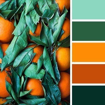 Paleta de cores naturais perfeitas para o verão 2021 por Alessandra Faria