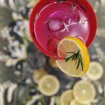 3 receitas de gin tônica para o verão.