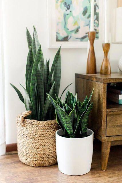 Como usar cestos organizadores artesanais na decoração por Alessandra Faria